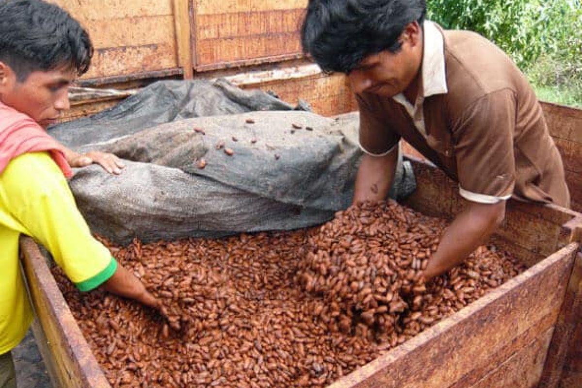 img produit Noir 63% - Coco